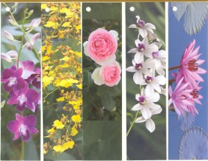 набор цветы 6-10