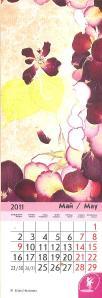 Флористические этюды-май